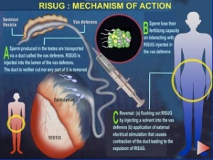 risug_mechanism